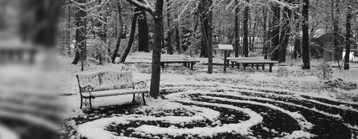 Winter at COA