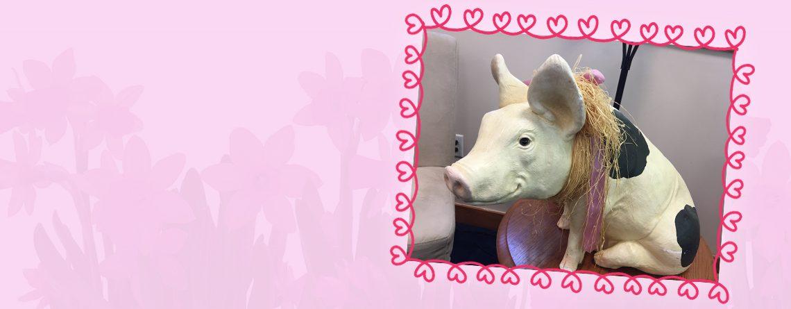 COA Children's Offering bought a PIG through Heifer International